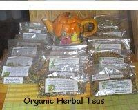 AVIVA'S ORGANIC PREGNANCY HERBAL TEA